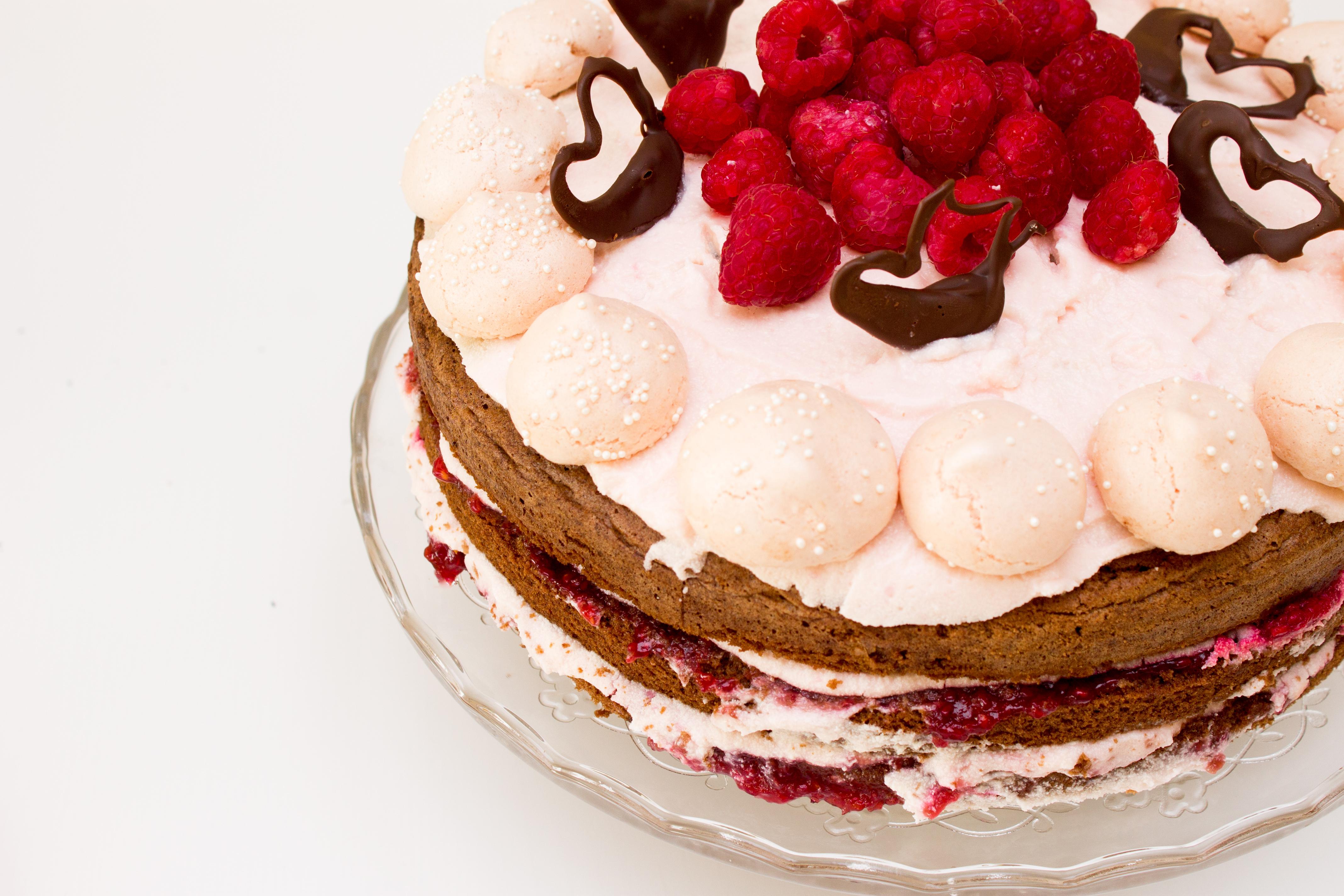 Malinový dort-1
