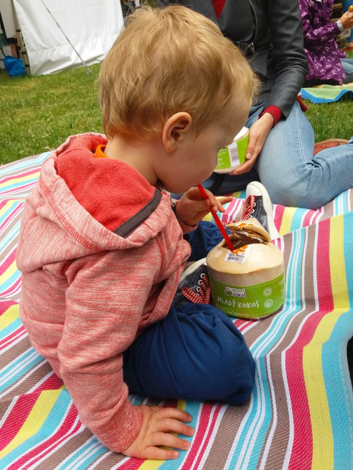 Apetit piknik 2017-6